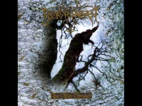 Borknagar - The Eye Of Oden