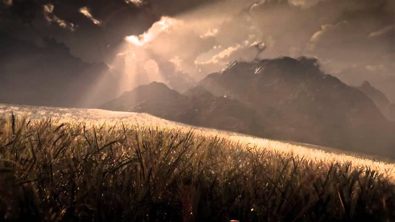 vue xstream wheat field