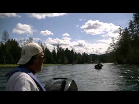 Cowlitz river fishing