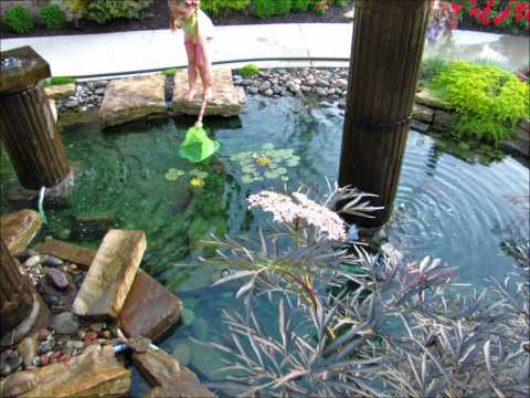 425-492-5000 landscaping bothell wa, landscaping lynnwood, landscaping snohomish wa