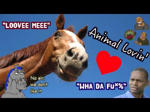 07. Let's Do This!!! - Animal Lovin Zoo & Korey's Mr Horse Saga video