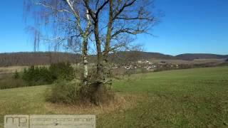 Drohnenaufnahmen Weimarer Land I