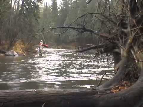 JigHeads - Fall Steelhead Fishing Show