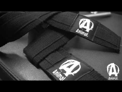 0 Animal Unboxed : Pro Lifting Straps