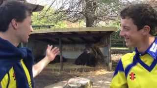 Which animal does your teammate remind you of? James Fuller and Will Tavare at Bristol Zoo