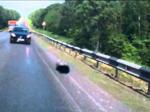 Авария на трассе М 5