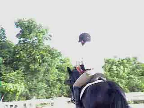 A horse jumping bareback no bridle (at the end)