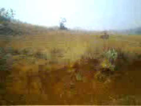 Land Plot on Sale near kolhapur