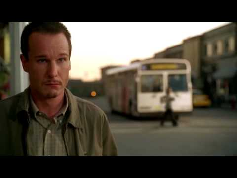 Hit By A Bus* - The Supercut