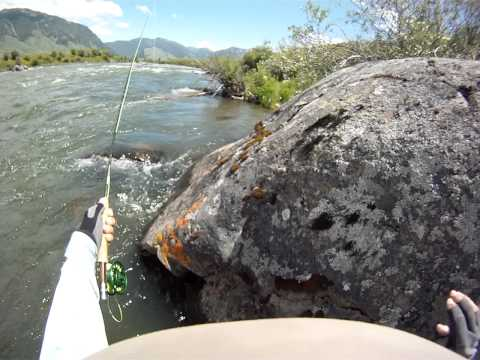 Fishing the Madison River - Catching a Brown Trout - 7-14-2011 -.MP4
