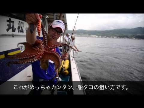 【蛸墨族】 船での狙い方説明動画