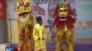 Enjoy festive spirit! Chinese Spring Festival celebrations around the world