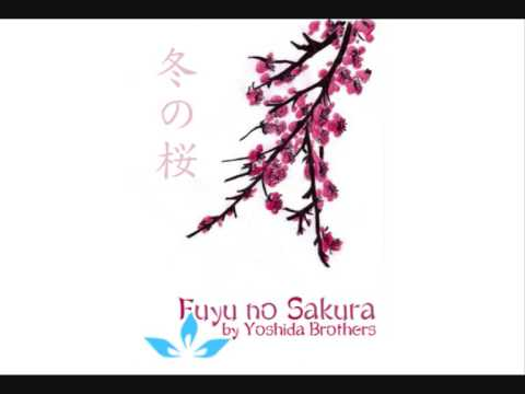 Yoshida Brothers - Fuyu no Sakura Music Videos