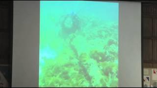 Shipwreck found Off Haiti May Be Santa Maria