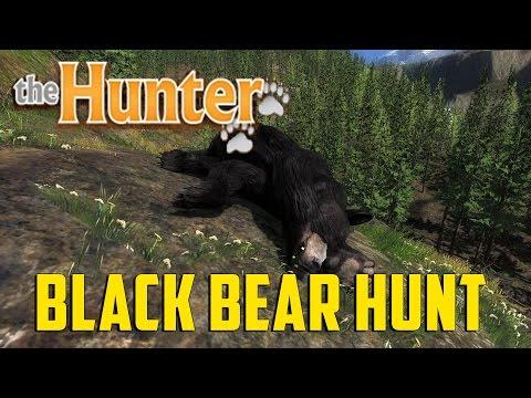 TheHunter - Black Bear Hunt