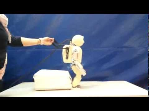 Full-body postural control of a humanoid robot with both imitation learning and skill innovation