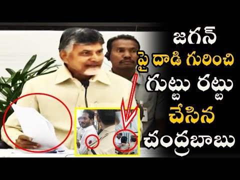Chandra Babu Reveals Secrets About Jagan Attack At Vizag Airport || AP Politics || News Book