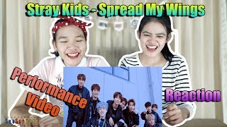 Stray Kids - Spread My Wings Performance Video Reaction (Thai Ver.) | SeaSunSand