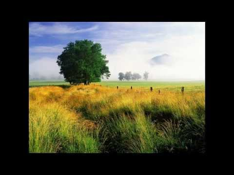 大自然音樂 Nature music--擁抱大自然 Embrace of nature