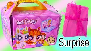 BFF Pets + Dolls Best Furry Friends ! Giant Surprise Package Box ! Cookie Swirl C Doll !!!