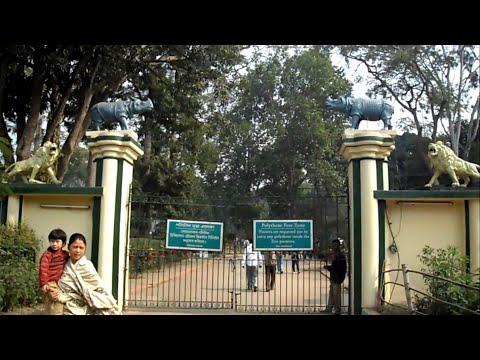 GUWAHATI ZOO - The Assam State Zoo cum Botanical Garden thumbnail