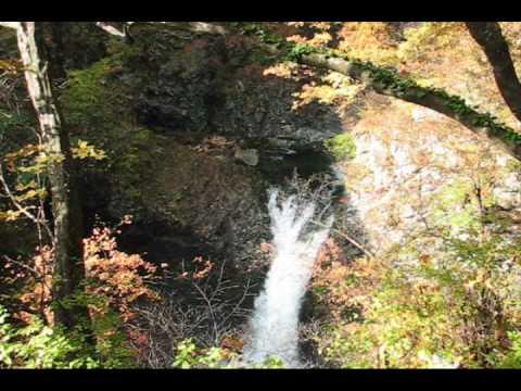 鳳鳴四十八滝の紅葉 2009