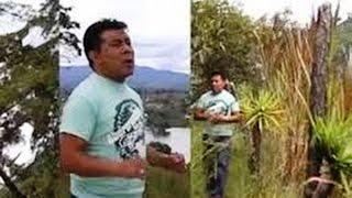 download lagu Julio Elias Coros De Poder, Mix De Coros De gratis