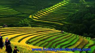 Travel to Sapa, Sapa tours