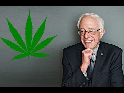 Bernie Sanders Introduces Ending Federal Marijuana Prohibition Act