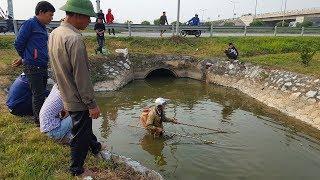 Đi câu cá gặp ngay mấy cao thủ kích điện giăng lưới