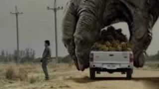 Two Giant Gorilla plays the car