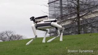 Top 4 favourite BostonDynamics videos