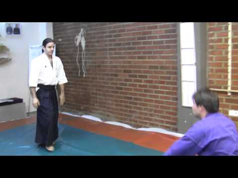 Ogawa Ryu International Representatives Training - Aikijujutsu II Image 1