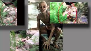 Criatura Humanoide En Bosque De China