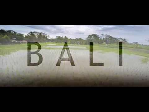 Travel to Bali by a drone (2015)