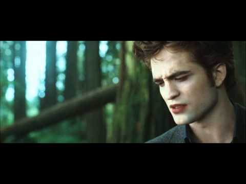 Twilight Saga All Story Super
