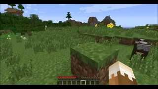 Minecraft - Herobrine Sighting