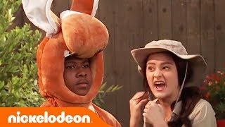 Lizzy Greene Is Boxing 🥊 a Kangaroo?! | Nicky, Ricky, Dicky & Dawn | Nick