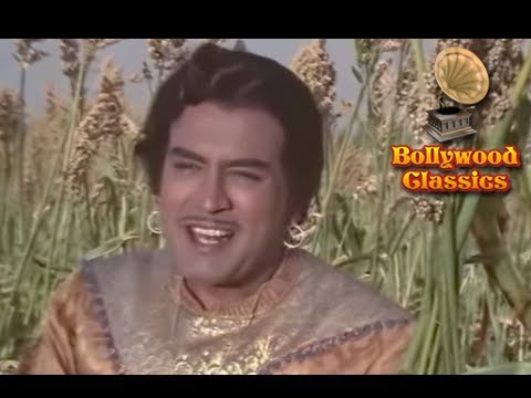 O Phirkiwali - Mohammed Rafi's Classic Peppy Song - Raja Aur Runk video