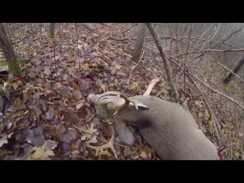Jon Theis- 8 Point Buck- 2013- MN Deer Hunting