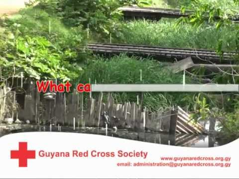 Guyana Red Cross Society Climate Change Adaptation video one