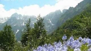 Këngë labe - Mora lart Shushicën