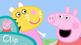 Peppa Pig - How to be a proper tiger (clip)