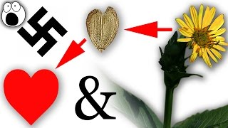 10 Symbols You Don