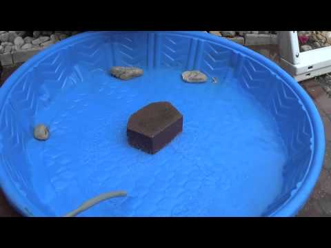 How to make a Pet Turtle Pool ...Do it yourself