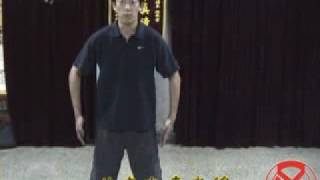 意拳锻炼 Yiquan training, 10-05, 4-12, 提插桩 Piercing Lifting Pillar