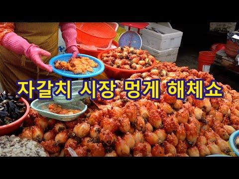 자갈치시장 멍게  チャガルチ市場   Jagalchi Market Sea Squirt video