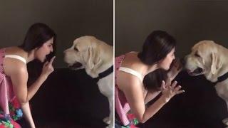 Anushka Sharma Singing Ae Dil hai Mushkil's Bulleya Song To Her Dog DUDE