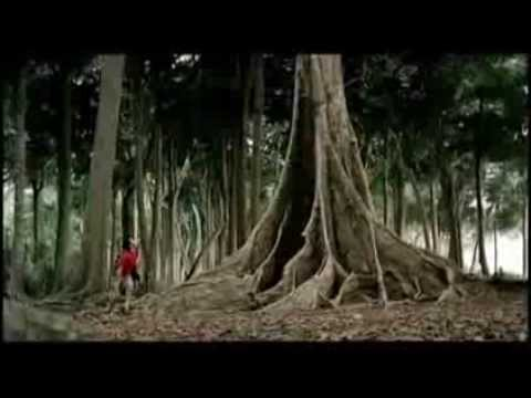 Incredible India - Culture Delights - TV Tourism Commercial - TV Spot - The Travel Channel