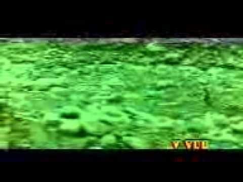 Allah  Karam  Karna video